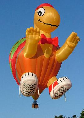 turtle hot air balloon