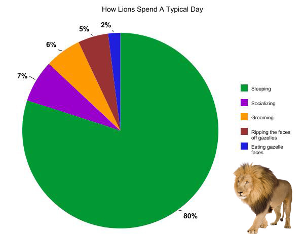 Percentage Of People Who Eat Cat Food
