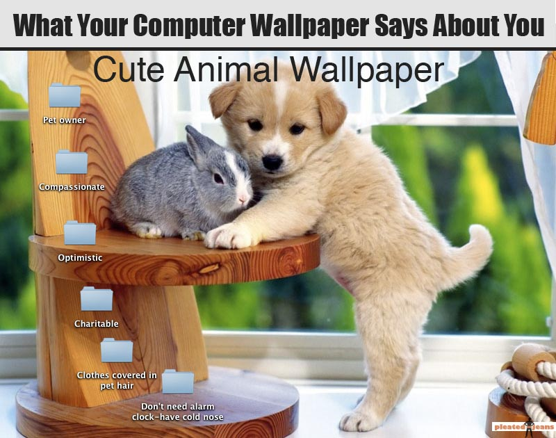 Cute animal desktop backgrounds