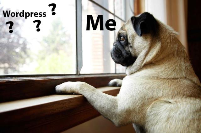 dog-wait-door